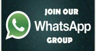 whatssap grup
