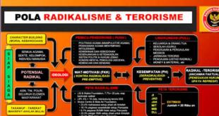 pola radikalisme